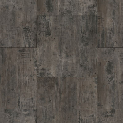 CORETEC The Essentials Stone 1801 Petrified Forest